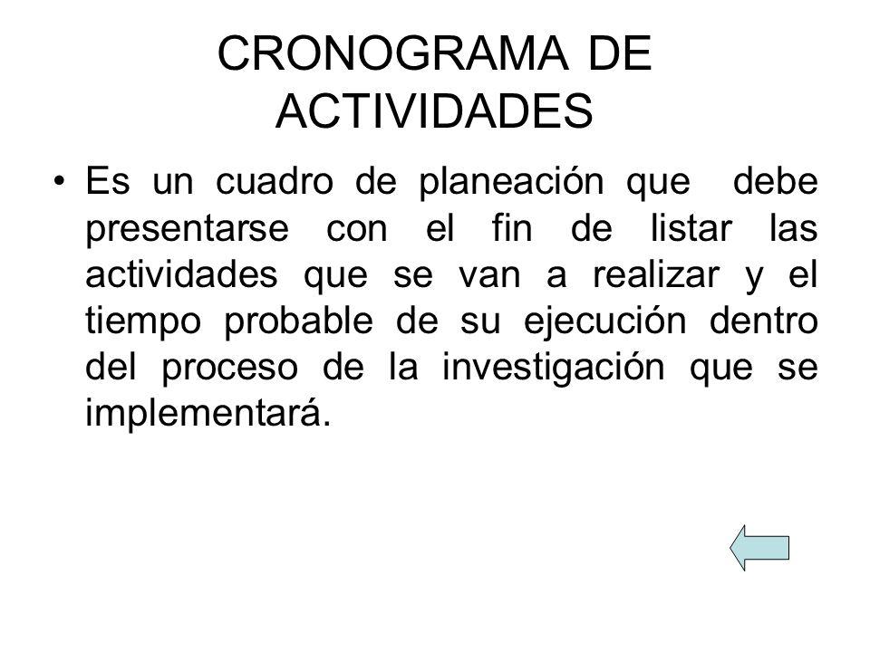CRONOGRAMA DE ACTIVIDADES