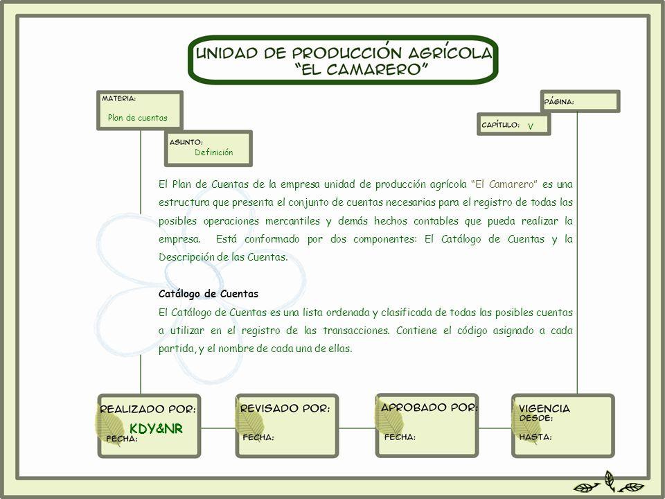 Plan de cuentas V. Definición.