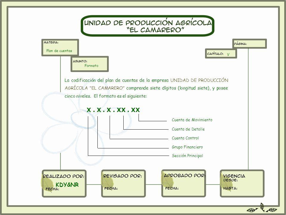 Plan de cuentas V. Formato.