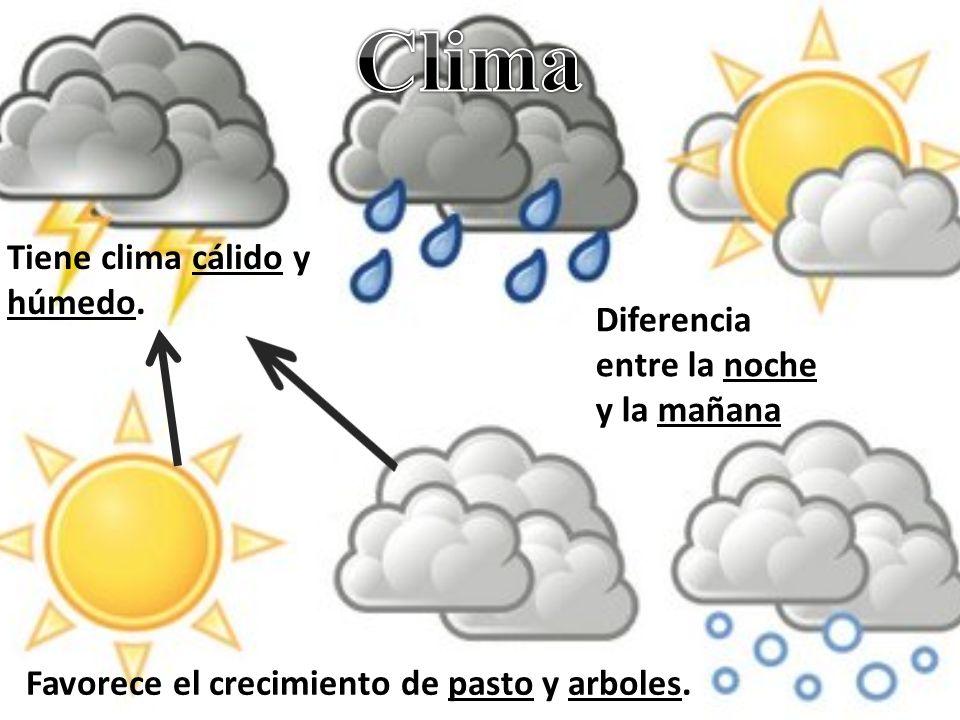 Clima Tiene clima cálido y húmedo.