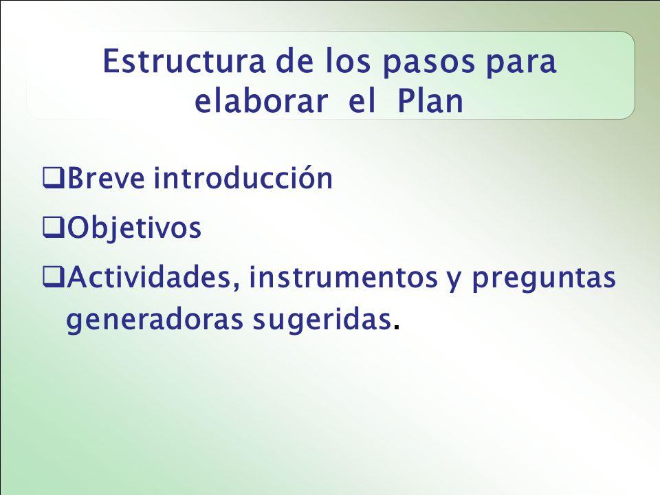 Estructura de los pasos para elaborar el Plan
