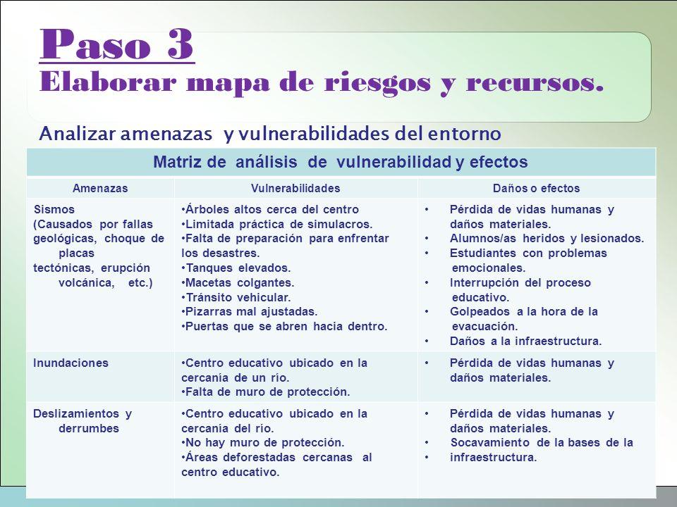 Matriz de análisis de vulnerabilidad y efectos