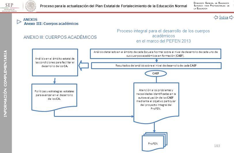 ANEXOS Anexo III: Cuerpos académicos