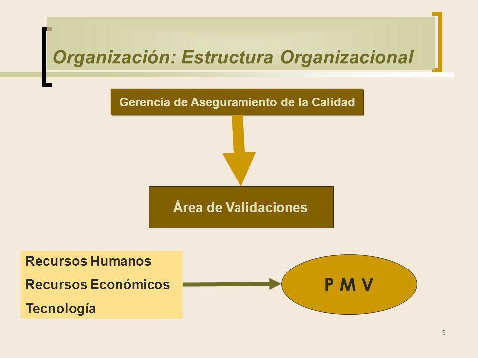 Organización: Estructura Organizacional