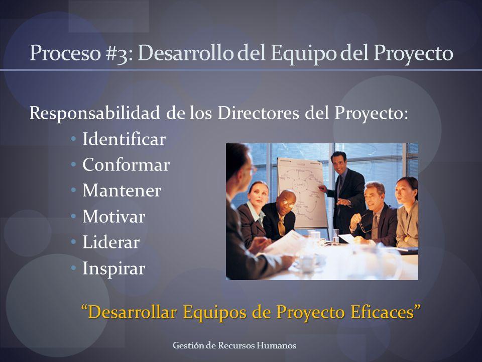 Proceso #3: Desarrollo del Equipo del Proyecto