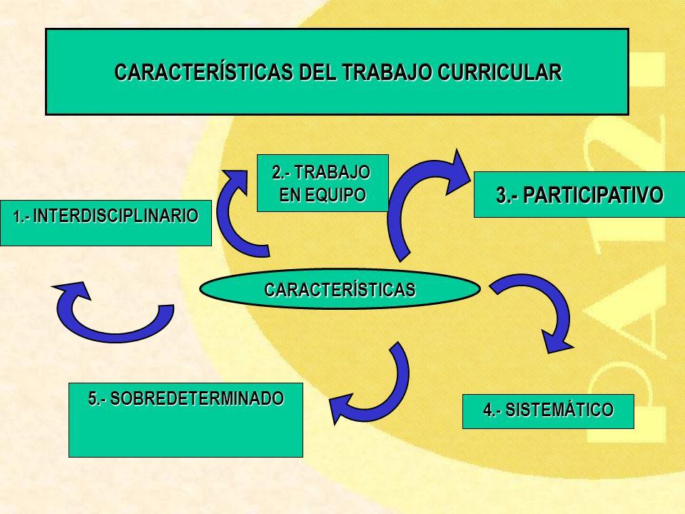 CARACTERÍSTICAS DEL TRABAJO CURRICULAR