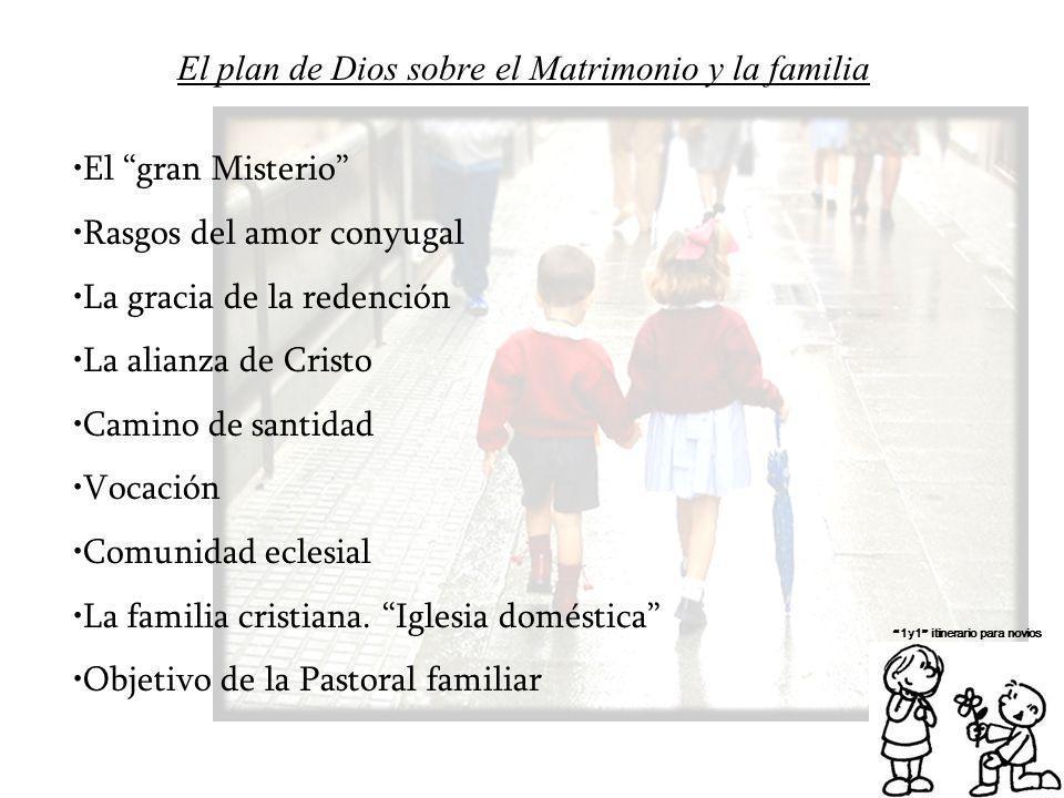 Matrimonio Y Familia En El Proyecto De Dios : El plan de dios sobre matrimonio y la familia ppt