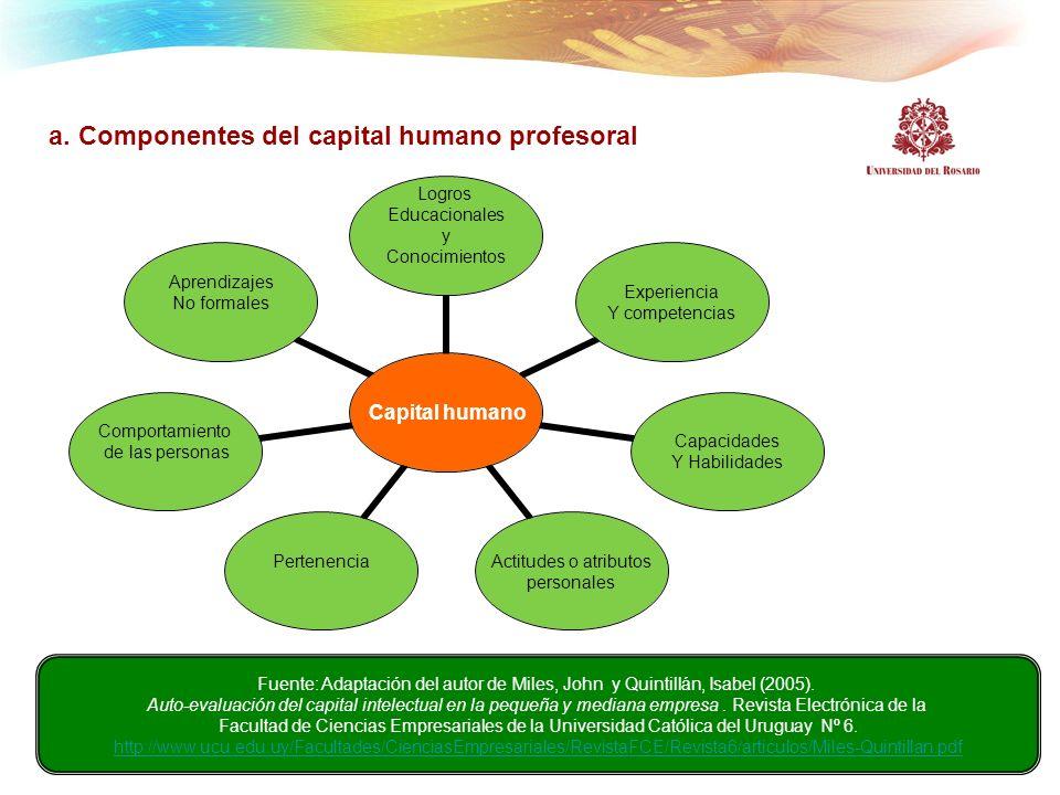 a. Componentes del capital humano profesoral