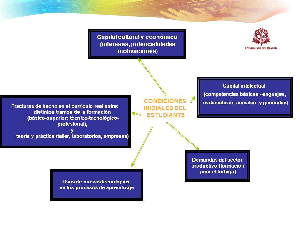 Capital cultural y económico (intereses, potencialidades motivaciones)