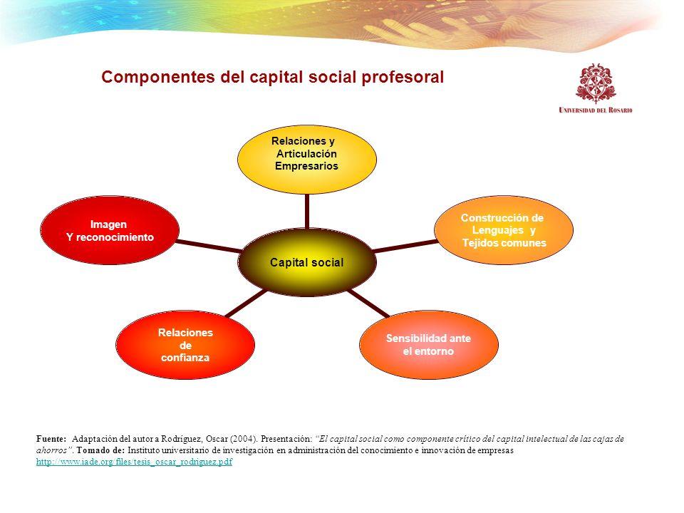 Componentes del capital social profesoral