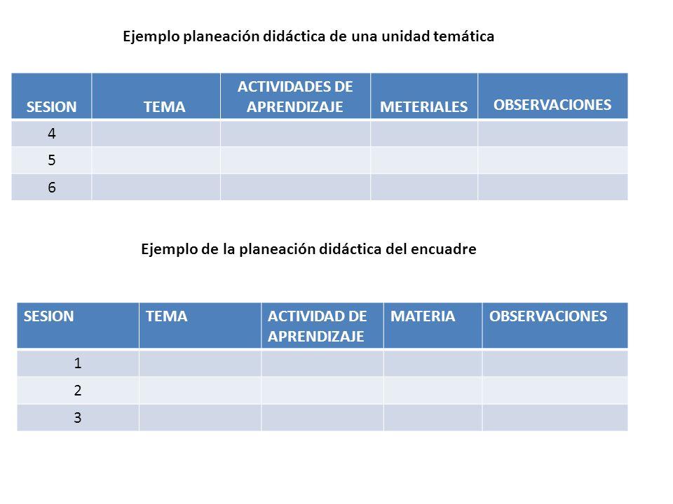 Ejemplo planeación didáctica de una unidad temática SESION TEMA