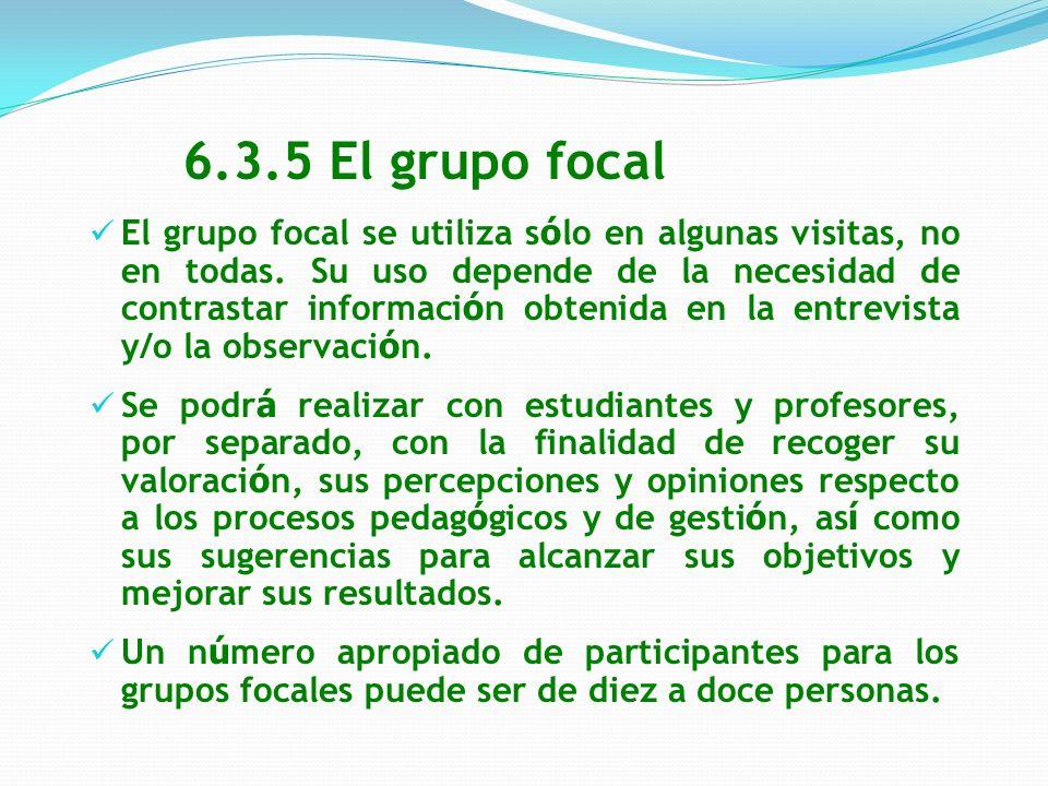 6.3.5 El grupo focal