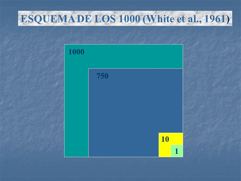 ESQUEMA DE LOS 1000 (White et al., 1961)