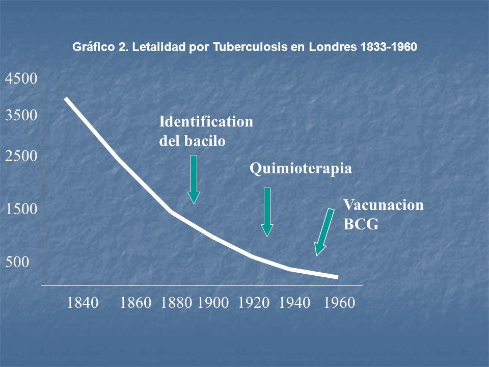 4500 3500 Identification del bacilo 2500 Quimioterapia Vacunacion BCG