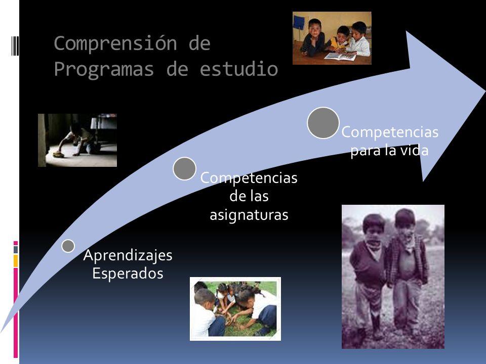 Comprensión de Programas de estudio