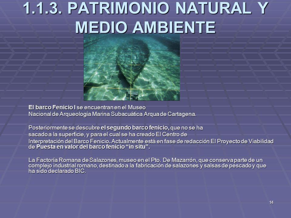1.1.3. PATRIMONIO NATURAL Y MEDIO AMBIENTE
