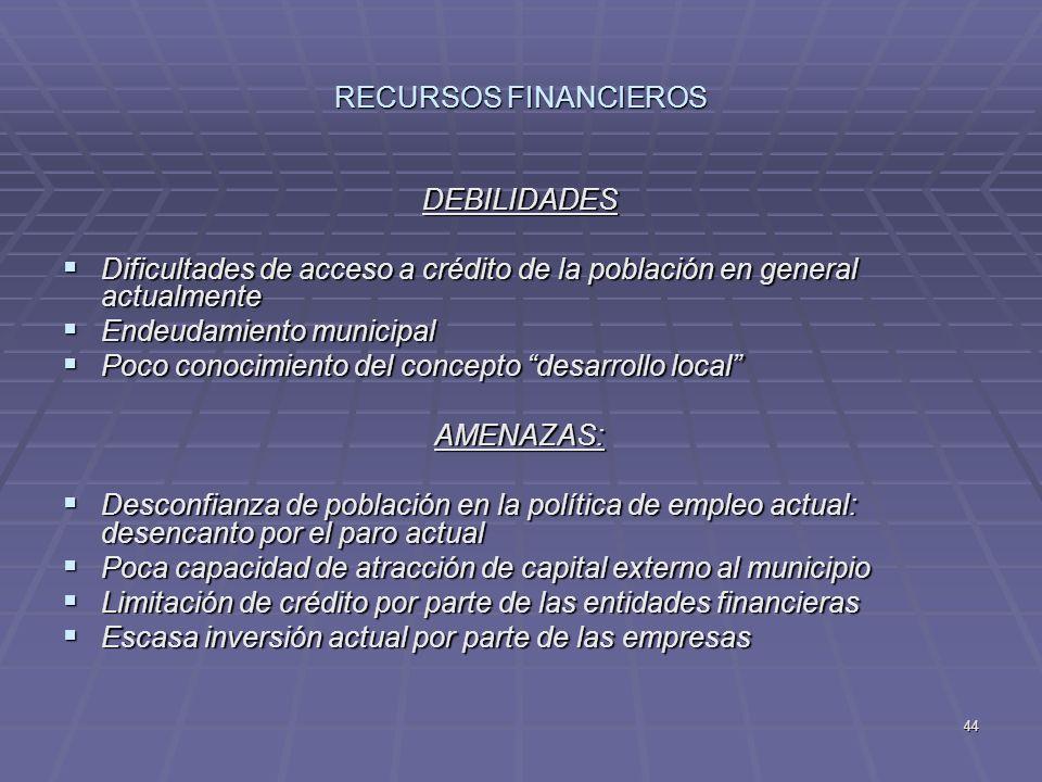 RECURSOS FINANCIEROS DEBILIDADES. Dificultades de acceso a crédito de la población en general actualmente.