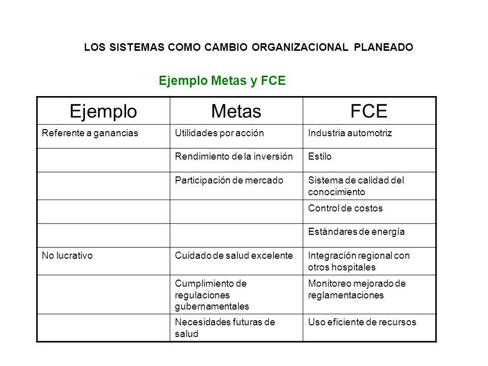 Ejemplo Metas y FCE Ejemplo Metas FCE
