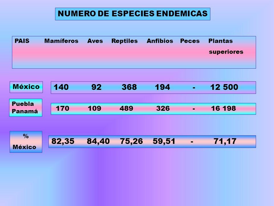 NUMERO DE ESPECIES ENDEMICAS
