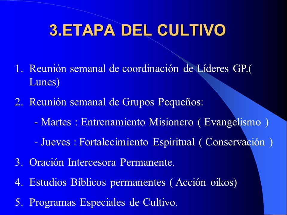 3.ETAPA DEL CULTIVO Reunión semanal de coordinación de Líderes GP.( Lunes) Reunión semanal de Grupos Pequeños: