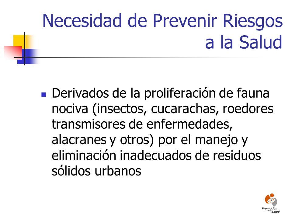 Necesidad de Prevenir Riesgos a la Salud