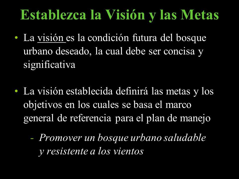 Establezca la Visión y las Metas