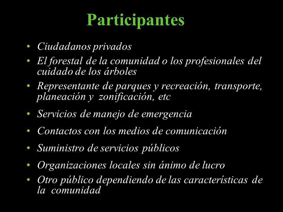Participantes Ciudadanos privados