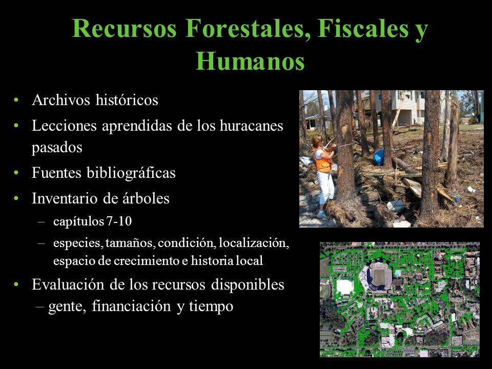 Recursos Forestales, Fiscales y Humanos