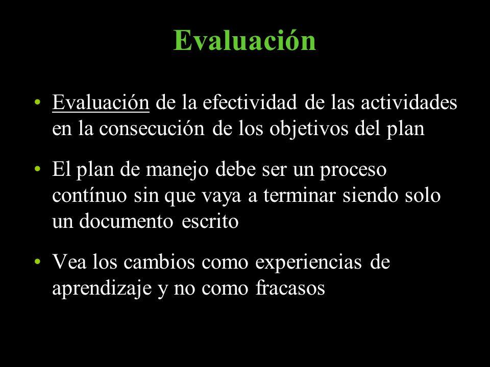 Evaluación Evaluación de la efectividad de las actividades en la consecución de los objetivos del plan.