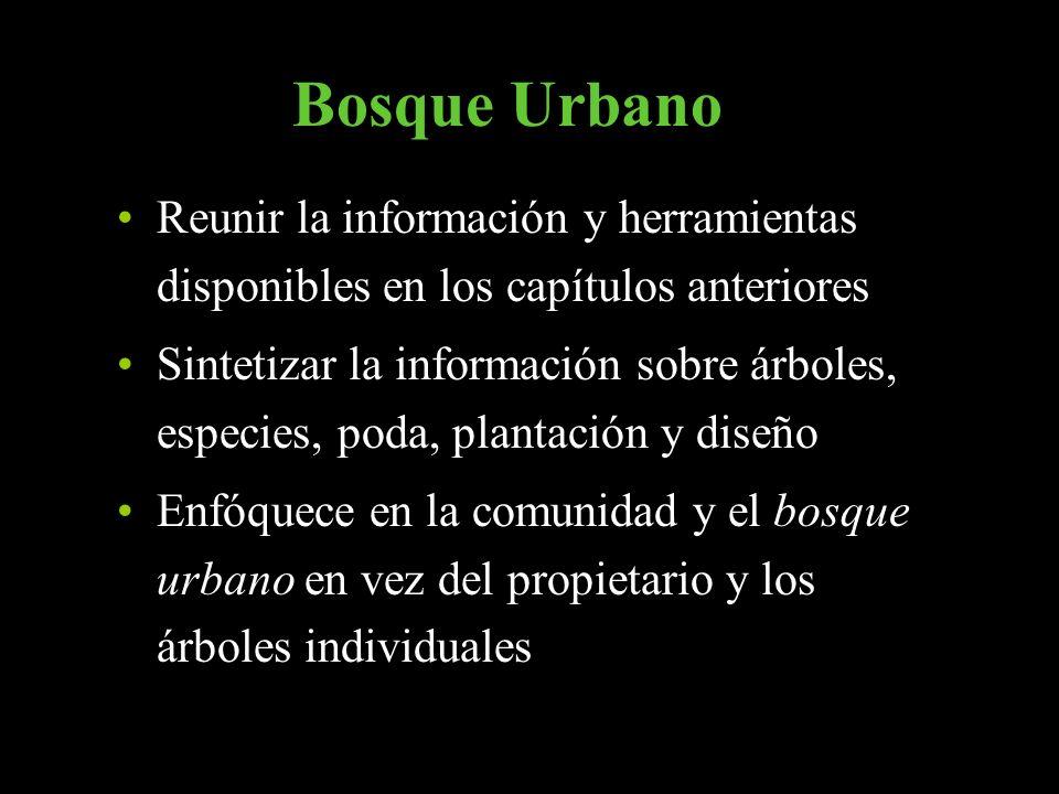 Bosque Urbano Reunir la información y herramientas disponibles en los capítulos anteriores.