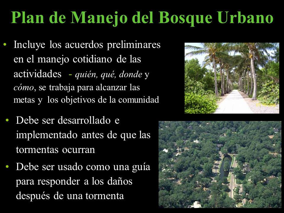 Plan de Manejo del Bosque Urbano