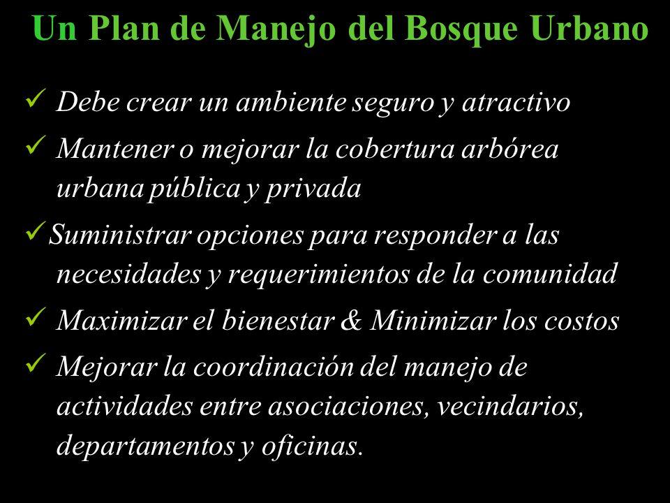 Un Plan de Manejo del Bosque Urbano