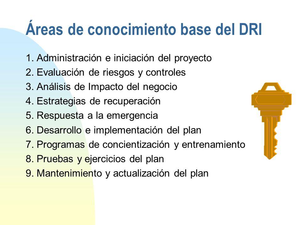 Áreas de conocimiento base del DRI