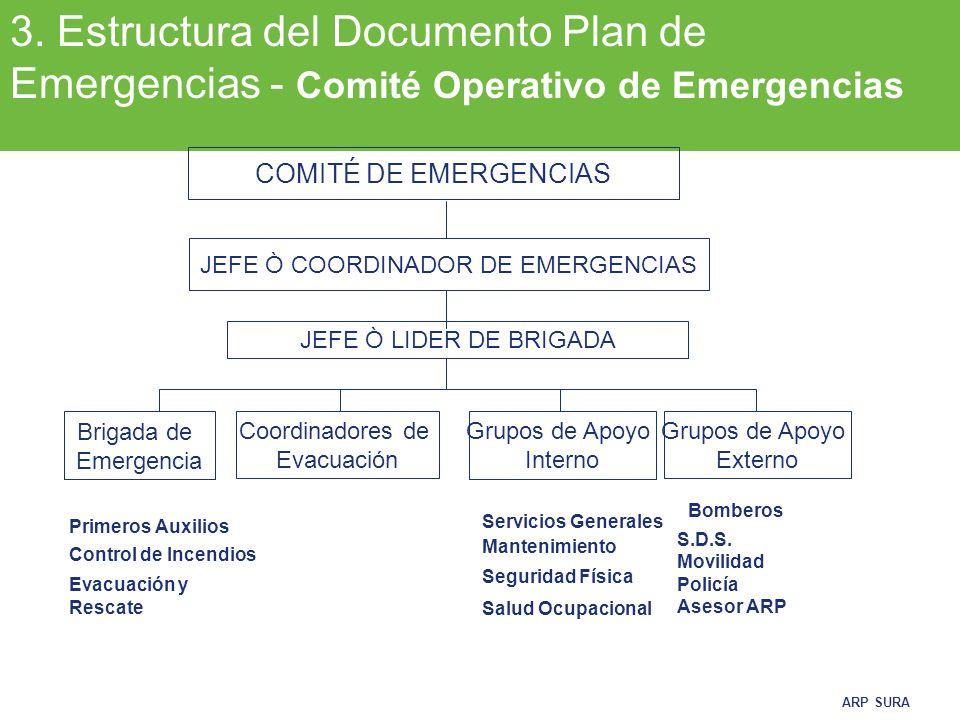 JEFE Ò COORDINADOR DE EMERGENCIAS