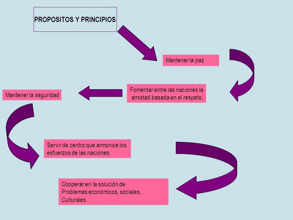 PROPOSITOS Y PRINCIPIOS