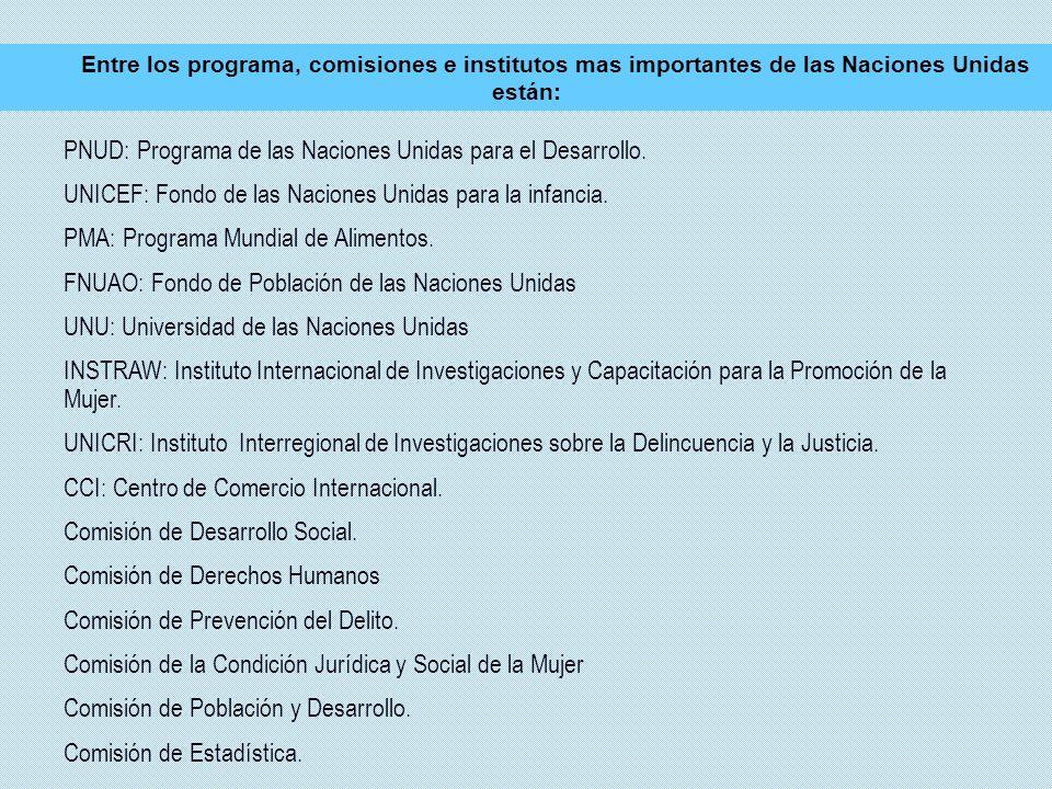 PNUD: Programa de las Naciones Unidas para el Desarrollo.
