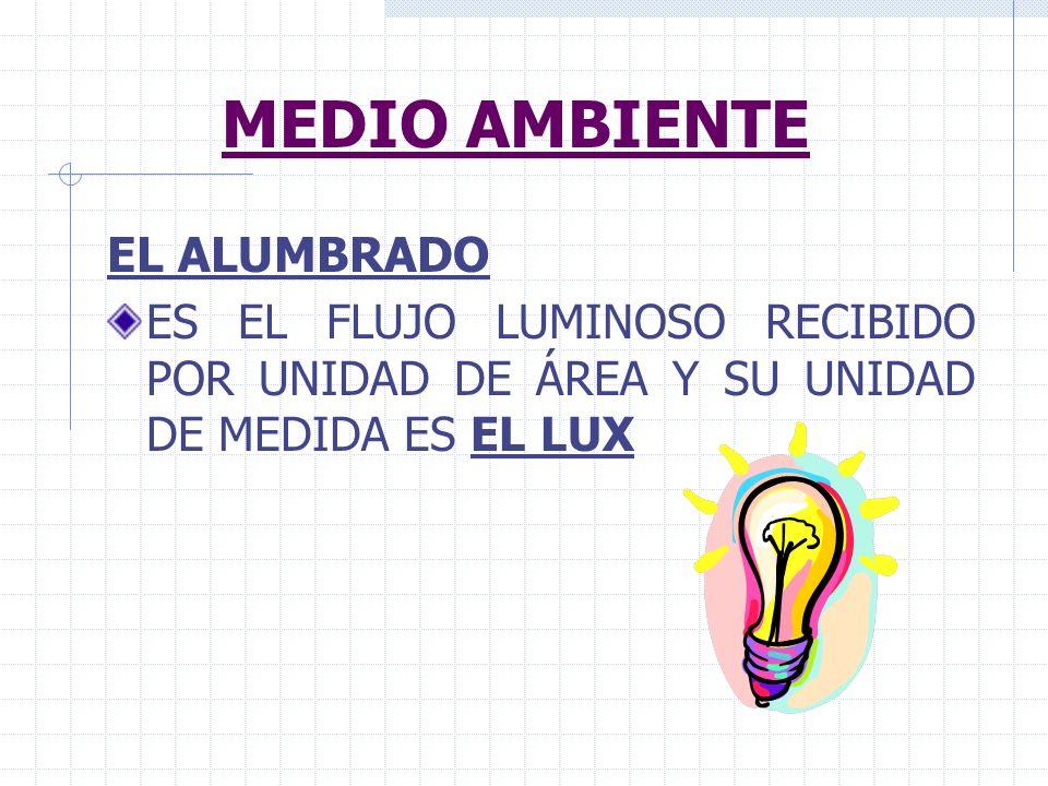 MEDIO AMBIENTE EL ALUMBRADO
