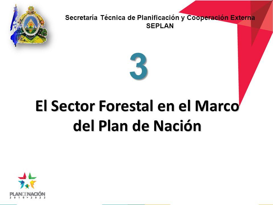 El Sector Forestal en el Marco del Plan de Nación