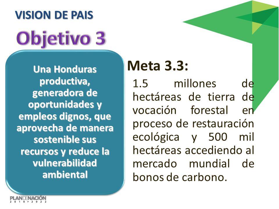 Objetivo 3 Meta 3.3: VISION DE PAIS