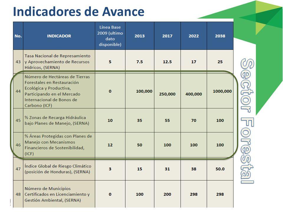 Indicadores de Avance Sector Forestal