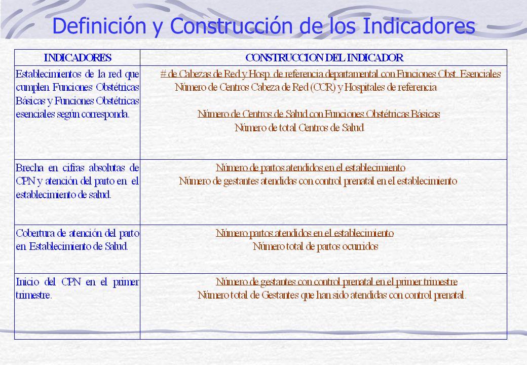 Definición y Construcción de los Indicadores