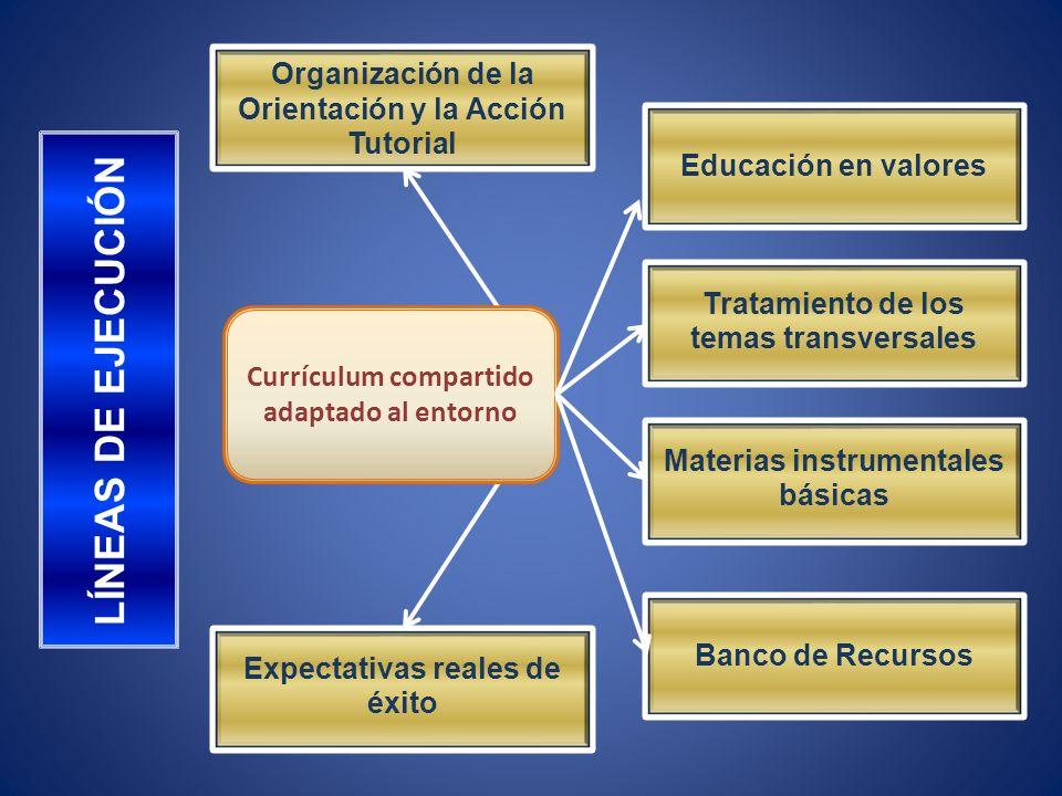 Organización de la Orientación y la Acción Tutorial