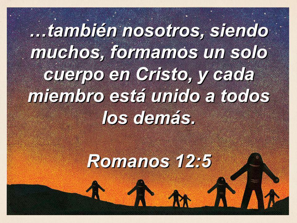 …también nosotros, siendo muchos, formamos un solo cuerpo en Cristo, y cada miembro está unido a todos los demás.