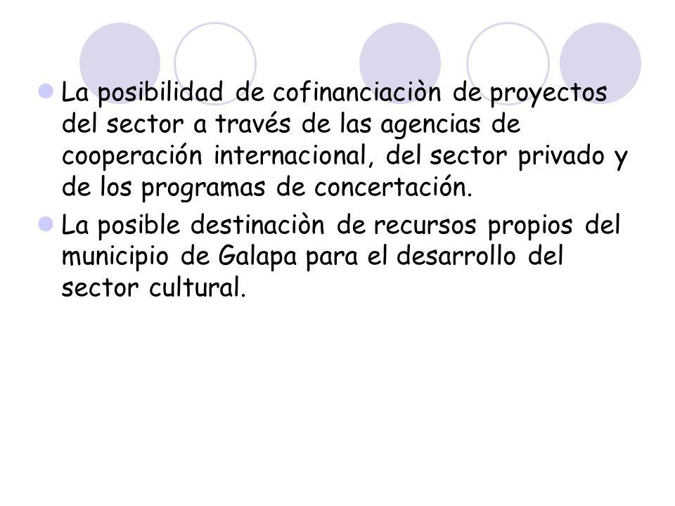 La posibilidad de cofinanciaciòn de proyectos del sector a través de las agencias de cooperación internacional, del sector privado y de los programas de concertación.