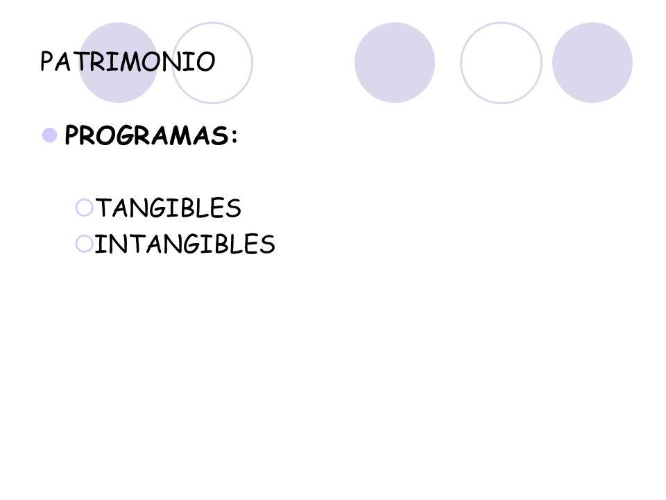 PATRIMONIO PROGRAMAS: TANGIBLES INTANGIBLES