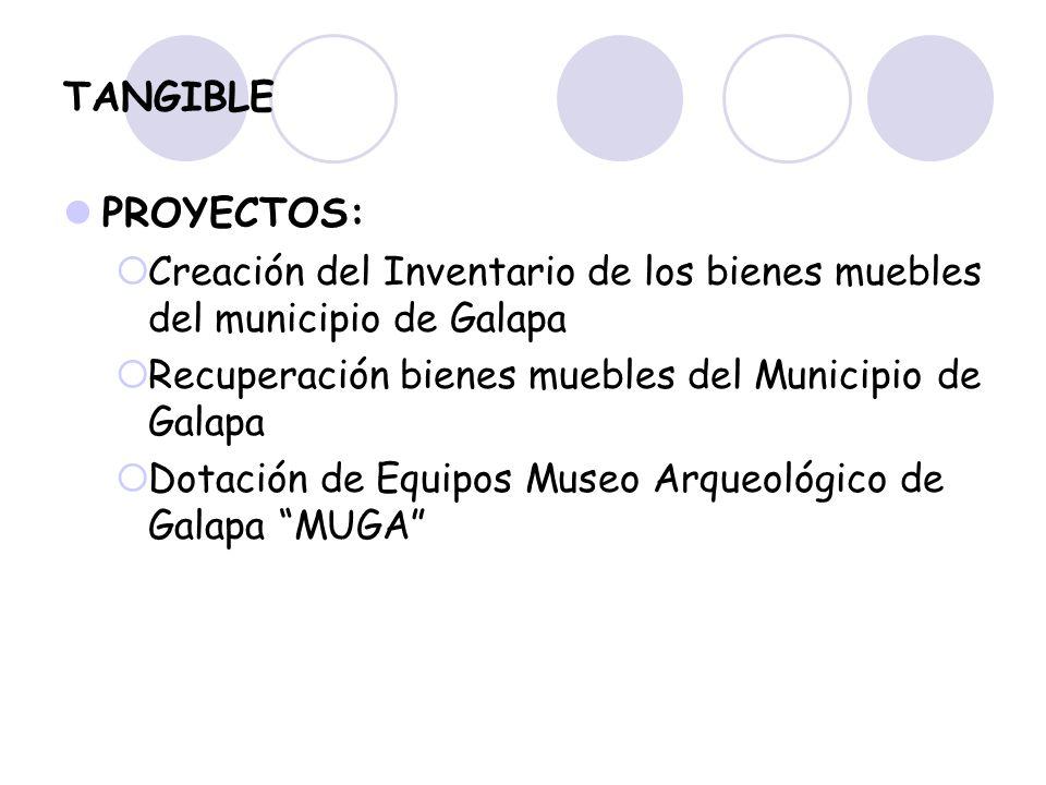 TANGIBLE PROYECTOS: Creación del Inventario de los bienes muebles del municipio de Galapa. Recuperación bienes muebles del Municipio de Galapa.