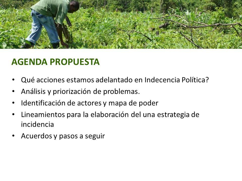 AGENDA PROPUESTA Qué acciones estamos adelantado en Indecencia Política Análisis y priorización de problemas.