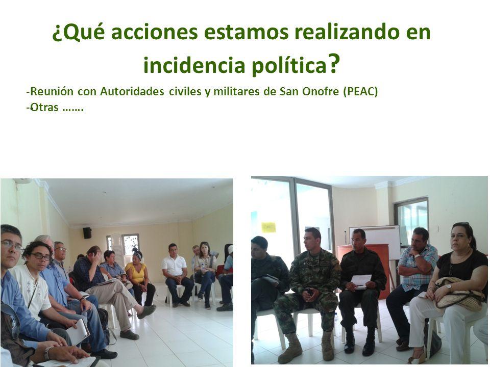 ¿Qué acciones estamos realizando en incidencia política
