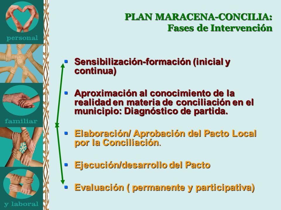 PLAN MARACENA-CONCILIA: Fases de Intervención