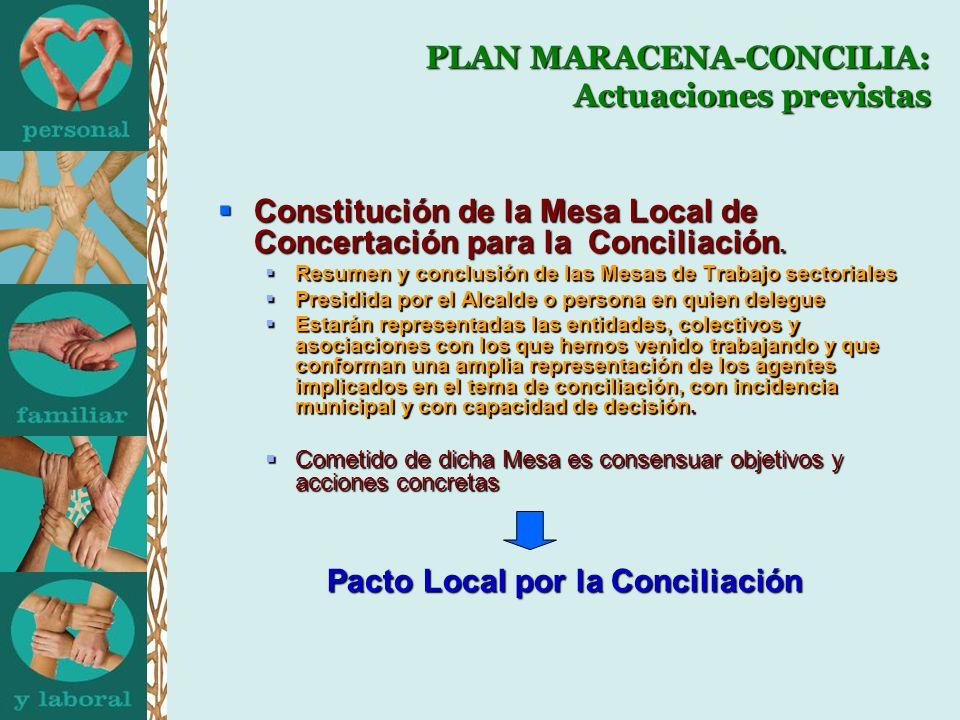 PLAN MARACENA-CONCILIA: Actuaciones previstas
